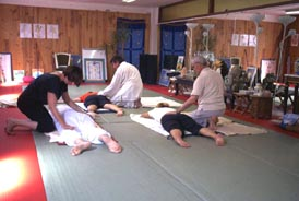 Body Relax Tenshin Dojo galerie photos  Formation Shiatsu